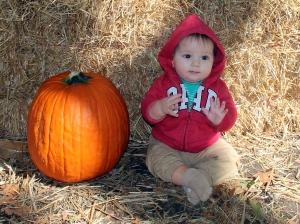 Charlie Pumpkin Cropped